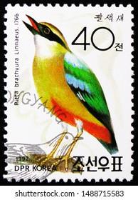 MOSCOW, RUSSIA - AUGUST 8, 2019: Postage stamp printed in Korea shows Indian Pitta (Pitta brachyura), Ornithologist Dr. Won Hong Gu serie, circa 1992