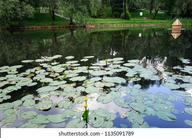 MOSCOW, RUSSIA - CIRCA JULY 2018Leontyevsky pond in the park