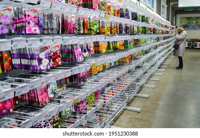 Moscow, Russia, December 2019: Stand with seeds of different varieties of annual flowers: marigold, petunias, etc. On a blurry background-a customer looks at the product and talks on smartphone