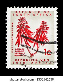 MOSCOW, RUSSIA - FEBRUARY 10, 2019: A stamp printed in South Africa shows Erythrina, Definitive Issue - Decimal Issueserie, circa 1968