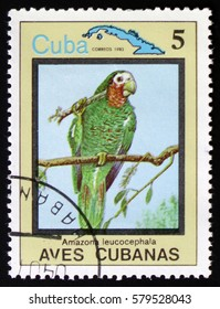 """MOSCOW, RUSSIA - FEBRUARY 12, 2017: A postage stamp printed in CUBA shows Amazona leucocephala, the series """"Cuban Birds"""", circa 1983"""
