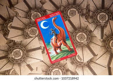 Reading Dragon Stock Photos, Images & Photography | Shutterstock