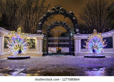MOSCOW, RUSSIA - January 05, 2019 Beautiful Peacocks at the Entrance to the Moscow Zoo on the Garden Ring during the current winter holidays 2018-2019