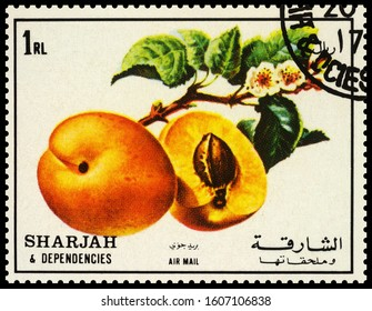 "Moscow, Russia - January 05, 2020: stamp printed in Sharjah shows apricot with branch, series ""Fruits"", circa 1972"