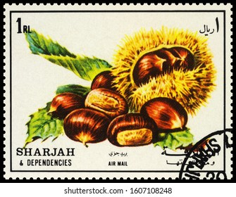"Moscow, Russia - January 06, 2020: stamp printed in Sharjah shows chestnut, series ""Fruits"", circa 1972"