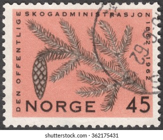"MOSCOW, RUSSIA - JANUARY, 2016: a post stamp printed in NORWAY shows a pine branch, the series ""The 100th anniversary of the National Forest Administration"", circa 1962"