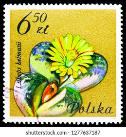 MOSCOW, RUSSIA - JANUARY 4, 2019: A stamp printed in Poland shows Lithops helmuti, Aizoaceae, Flowering Succulent Plants serie, circa 1981
