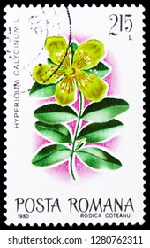 MOSCOW, RUSSIA - JANUARY 4, 2019: A stamp printed in Romania shows Aaron's Beard / St. Johnswort (Hypericum calycinum), Flowers serie, circa 1980