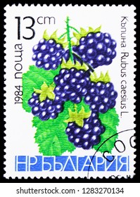 MOSCOW, RUSSIA - JANUARY 4, 2019: A stamp printed in Bulgaria shows Blackberry (Rubus caesius), Friuts serie, circa 1984