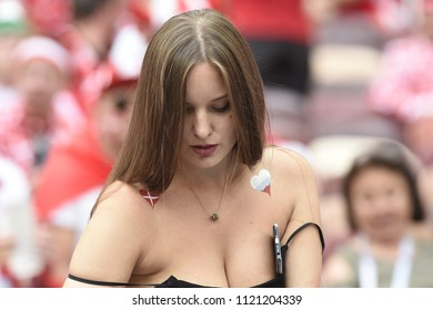 MOSCOW, RUSSIA - June 26, 2018: French and Denmark  fans celebrating during the World Cup Group C game between France and Denmark at Luzhniki Stadium.