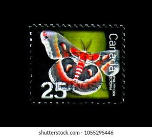 MOSCOW, RUSSIA - MARCH 18, 2018: A stamp printed in Canada shows Cecropia Moth (Hyalophora cecropia), Beneficial Insect Definitives 2007-2014 serie, circa 2007