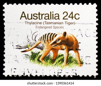 MOSCOW, RUSSIA - MARCH 23, 2019: Postage stamp printed in Australia shows Thylacine (Thylacinus cyanocephalus), Endangered Species (1981-1984) serie, circa 1981