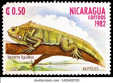MOSCOW, RUSSIA - MARCH 23, 2019: Postage stamp printed in Nicaragua shows Green Iguana (Iguana iguana), Reptiles serie, circa 1982
