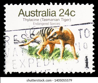 MOSCOW, RUSSIA - MARCH 30, 2019: A stamp printed in Australia shows Thylacine (Thylacinus cyanocephalus), Endangered Species (1981-1984) serie, circa 1981