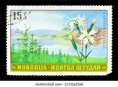 MOSCOW, RUSSIA - MAY 15, 2018: A stamp printed in Mongolia shows , serie, circa