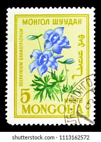 MOSCOW, RUSSIA - MAY 15, 2018: A stamp printed in Mongolia shows Delphinium grandiflorum, Flowers serie, circa 1960