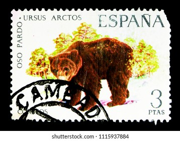 MOSCOW, RUSSIA - MAY 15, 2018: A stamp printed in Spain shows Brown Bear (Ursus arctos), Hispanic fauna serie, circa 1971