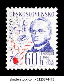 MOSCOW, RUSSIA - MAY 17, 2018: A stamp printed in Czechoslovakia shows Johann Gregor Mendel (1865-1965), Cultural anniversaries and events serie, circa 1965