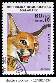 MOSCOW, RUSSIA - NOVEMBER 10, 2018: A stamp printed in Madagascar shows Carakal (Caracal caracal), Wildcats serie, circa 1986