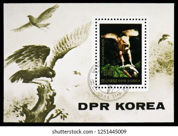 MOSCOW, RUSSIA - NOVEMBER 10, 2018: A stamp printed in Korea shows Black-eared Kite (Milvus migrans lineatus), Birds serie, circa 1984