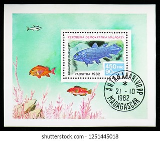 MOSCOW, RUSSIA - NOVEMBER 10, 2018: A stamp printed in Madagascar shows West Indian Ocean Coelacanth (Latimeria chalumnae), Fish serie, circa 1982