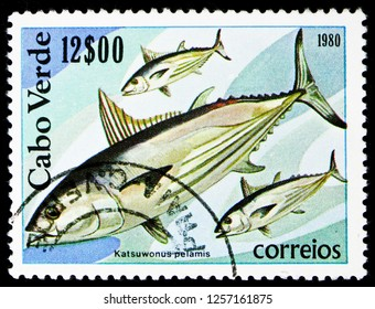 MOSCOW, RUSSIA - NOVEMBER 10, 2018: A stamp printed in Cape Verde shows Angler, Skipjack (Katsuwonus pelamis), Fishes serie, circa 1980