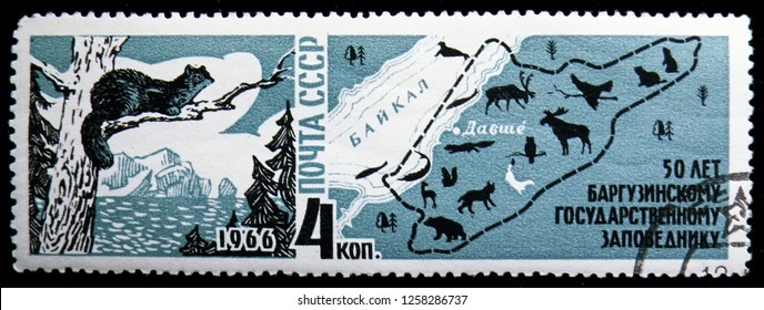 MOSCOW, RUSSIA - NOVEMBER 10, 2018: A stamp printed in USSR (Russia) shows Sable (Martes zibellina), Map of Lake Baikal &Nature Reserve, 50th Anniversary of Barguzin Nature Reserve, serie, circa 1966