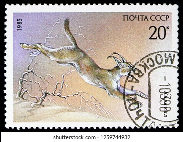 MOSCOW, RUSSIA - NOVEMBER 10, 2018: A stamp printed in USSR (Russia) shows Carakal (Caracal caracal), Protected Animals serie, circa 1985