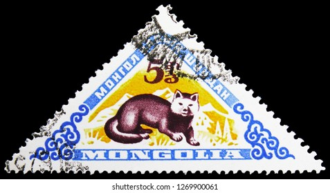 MOSCOW, RUSSIA - NOVEMBER 26, 2018: A stamp printed in Mongolia shows Sable (Martes zibellina), Mongolian Wild Animals serie, circa 1959