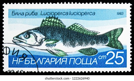 MOSCOW, RUSSIA - OCTOBER 21, 2018: A stamp printed in Bulgaria shows Zander (Lucioperca lucioperca), Freshwater fishes serie, circa 1983