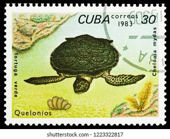MOSCOW, RUSSIA - OCTOBER 21, 2018: A stamp printed in Cuba shows Green Sea Turtle (Chelonia mydas), Turtles serie, circa 1983