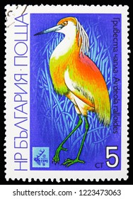 MOSCOW, RUSSIA - OCTOBER 21, 2018: A stamp printed in Bulgaria shows Squacco Heron (Ardeola ralloides), International Hunting Exhibition EXPO '81, Plovdiv: Waders serie, circa 1981