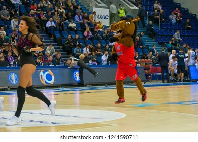 MOSCOW, RUSSIA - OCTOBER 29, 2018: Horse - CSKA mascot on the on basketball match CSKA vs Parma Perm on the regular championship of the VTB United League, in Universal Sports Complex CSKA them. Gomels