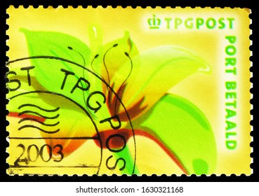 MOSCOW, RUSSIA - OCTOBER 7, 2019: Postage stamp printed in Netherlands shows Lily - TNT Post, Port Betaald serie, circa 2003