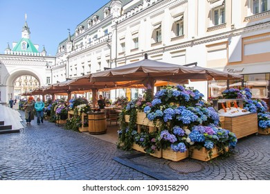 MOSCOW, RUSSIA, on MAY 10, 2018. The picturesque street cafe decorated with the blossoming hydrangeas in a shopping street Tretyakovsky Drive