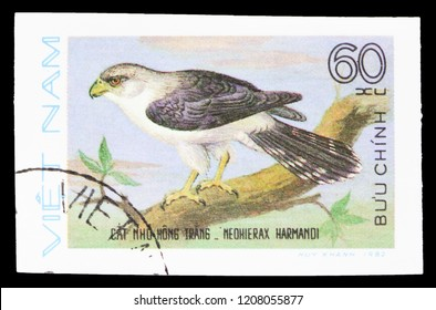 MOSCOW, RUSSIA - SEPTEMBER 26, 2018: A stamp printed in Vietnam shows White-rumped Falcon (Neohierax harmandi), Birds of Prey serie, circa 1982