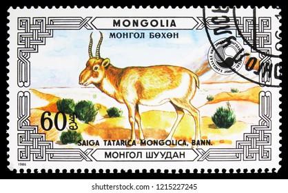 MOSCOW, RUSSIA - SEPTEMBER 26, 2018: A stamp printed in Mongolia shows Mongolian Saiga (Saiga tatarica), Saiga tatarica mongolica serie, circa 1986