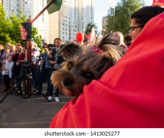 MOSCOW, RUSSIA-MAY 27, 2019: Rally against the construction of a residential building in Moscow, Lublin district