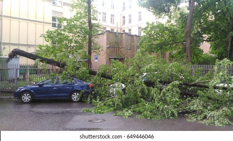 Moscow, Russian Federation,  Begovaya metro station. May 29, 2017. The consequences of the hurricane. The tree fell on the cars and damaged them.