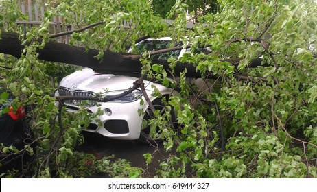 Moscow, Russian Federation, metro Begovaya. May 29, 2017. The consequences of the hurricane. The tree fell on the cars and damaged them.