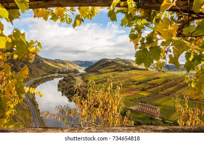Moselle Autumn golden vineyards Landscape calmont region Germany