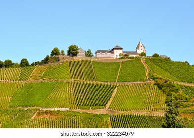 Moselle Valley Germany: View to vineyards and Marienburg castle near Puenderich, Europe