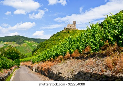Moselle Valley Germany: View to vineyards and ruins of Landshut castle near Bernkastel-Kues, Europe