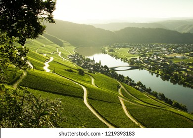 """The Moselle valley in the morning light seen from the """" Moselsteig"""", a hikingtrail in Germany. Germany, August 2017."""