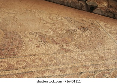 Mosiac floor from the ruins from Ancient Philippi are from the area known as the Bishop's palace which date as early as the 4th century BC.