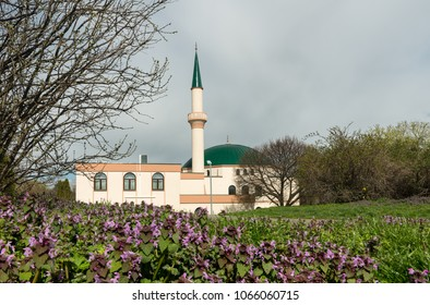 Mosque in Vienna (Austria) on a cloudy day in spring, flowers in the foreground