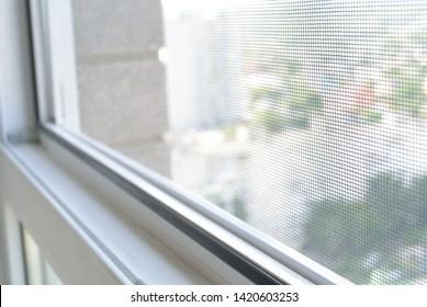 mosquito net on the window
