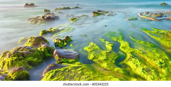 Moss beach beautiful sunny on coast path mossy rocks overlooking sea blue waves like clouds smoother landscaped peaceful morning to travel resort here