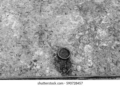 Moss Concrete Background   in Black and White
