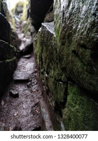 Moss covered rock at side of narrow passage in natural geological feature Lud's Church in the Peak District, Staffordshire, UK. Uniqie and mysterious location - legends & myths such as King Arthur